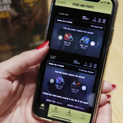 NY Online Sports Betting Software Applications Closed
